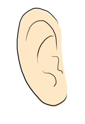 Rayures et ratures dans la t te d 39 un z bre for Exterieur oreille qui gratte