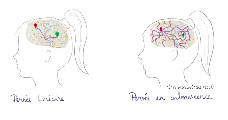 Pensee Divergente Chez La Personne Surdouee Illustrations